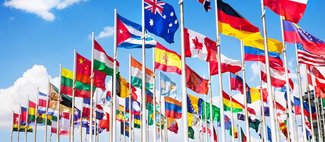 Наші міжнародні проекти